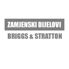 Zamjenski dijelovi Briggs & Stratton
